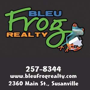 Blue Frog Realty ad