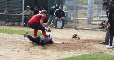 Lady Grizzly softball earns spot in the championship game