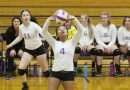 Cub volleyball suffers vanquishment by Grizzly paws