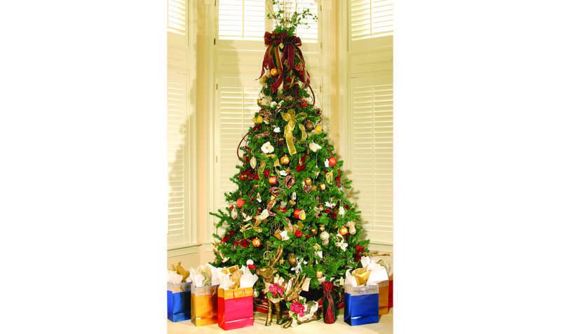 Christmas Tree Permits 2020 Lassen National Forest Christmas tree cutting permits available now   Lassen News