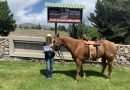 College rodeo member takes second in nationals