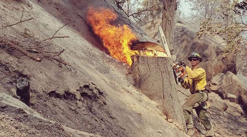 Walker Fire 98 percent contained